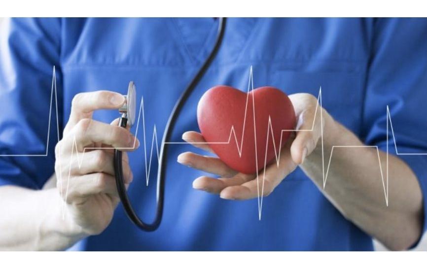 Holter RR/Holter EKG